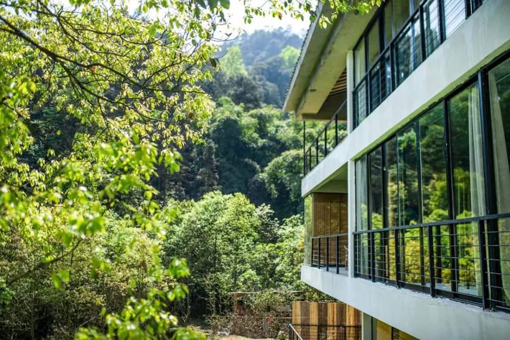 一家四口傾家蕩產在山里造房隱居:3年零收入,堅持不通車