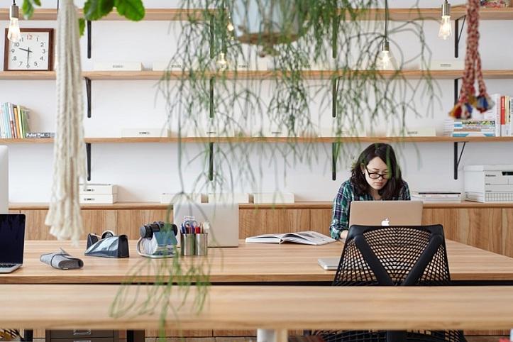 平面设计公司,在花草中惬意工作更高效