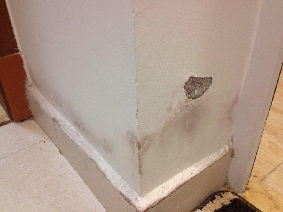 墙面脱皮怎么修补?墙面日常护理方法