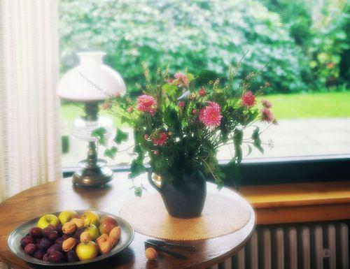 家居风水中的鲜花摆放