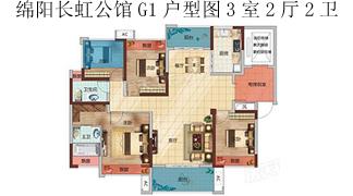 綿陽裝修方案綿陽長虹公館 長虹國際城4期G1 戶型圖3室2廳2衛-138.29㎡