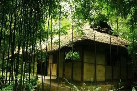 门前有竹子吉利吗?