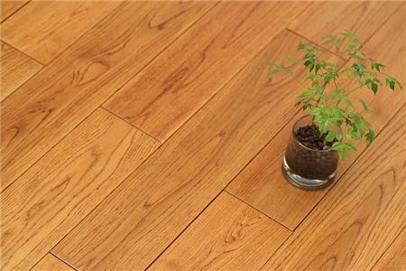 橡木和栎木的区别有哪些?