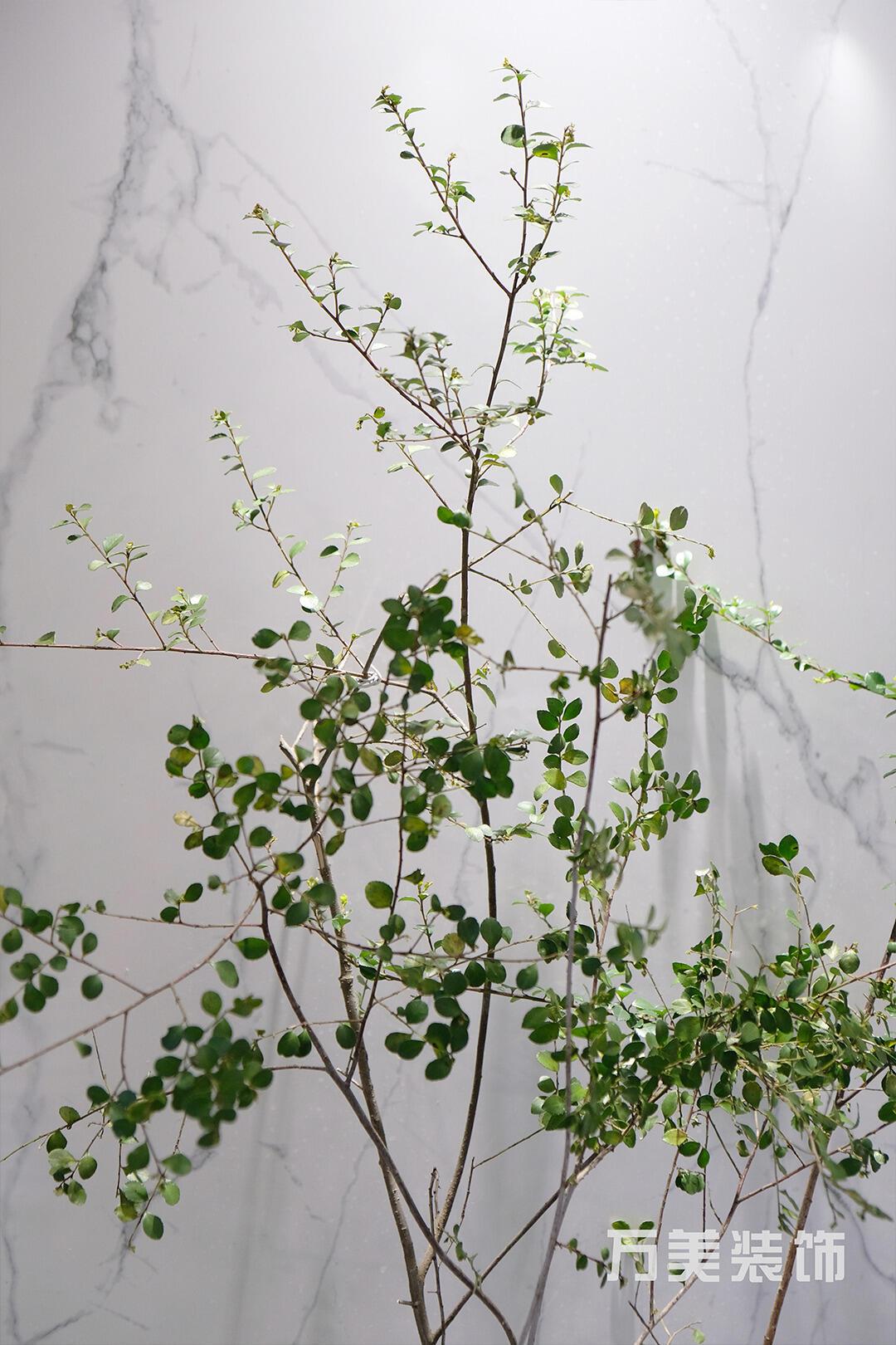 【家之美】中天鷺鷥灣二期137㎡,自然之力融入空間,尋求美學與尺度的平衡。