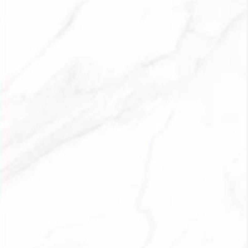 蒙娜丽莎瓷砖 8FMB1162PCM  800*800mm