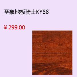 珠海小米瓷磚yy