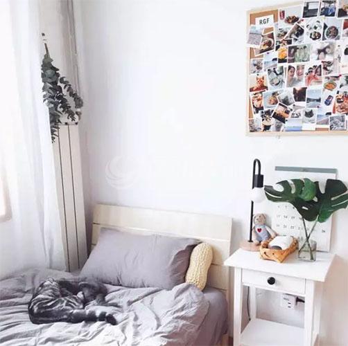 小卧室装修效果图,打造属于你的精美小天地!