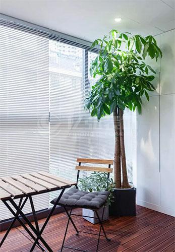 阳台装修效果图:没有休闲区和晾晒区的阳台,不理想不完美!